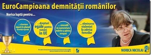 image-2014-04-24-17102524-41-norica-nicolai-afis-electoral